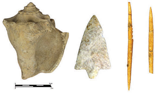 Objects from shell and non-shell sites. From left to right: marine shell axe, lithic hafted biface, bone tools.